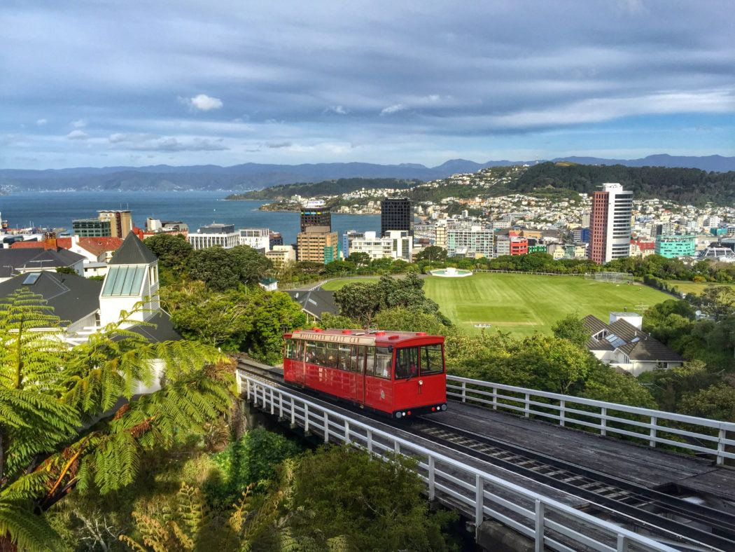 Newzealand Detail: A Few Of My Favorite (little) Things In Wellington, From A