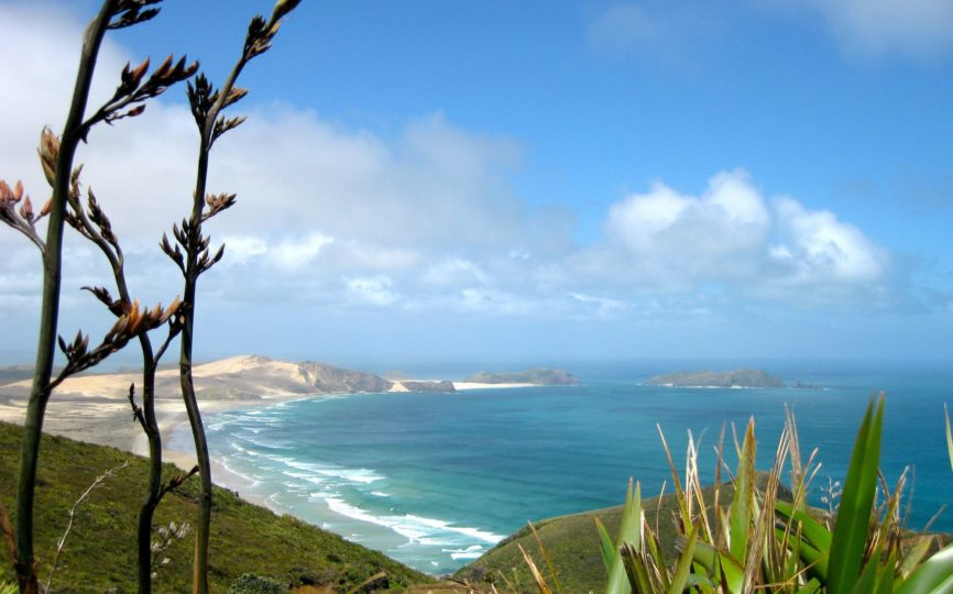 4 Things You Should Do in Northland, New Zealand