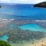 Under the Sea: Snorkeling at Hanauma Bay, Hawaii