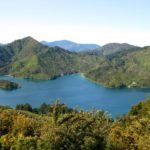 Hiking New Zealand's Queen Charlotte Track