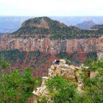 Grand Canyon Smackdown: North Rim vs. South Rim