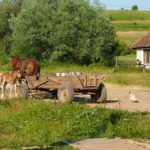 Village Scenes: Life in Rural Romania