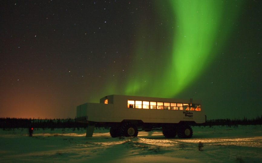 3 Reasons to Suck Up the Cost and Visit Churchill, Manitoba