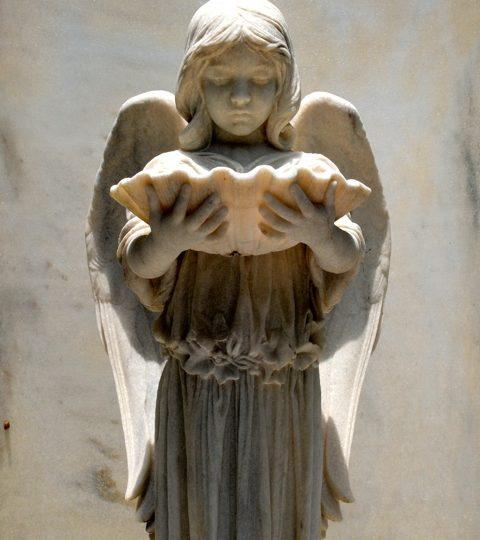 In Photos: Bonaventure Cemetery