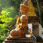 A Morning With Monks in Chiang Mai