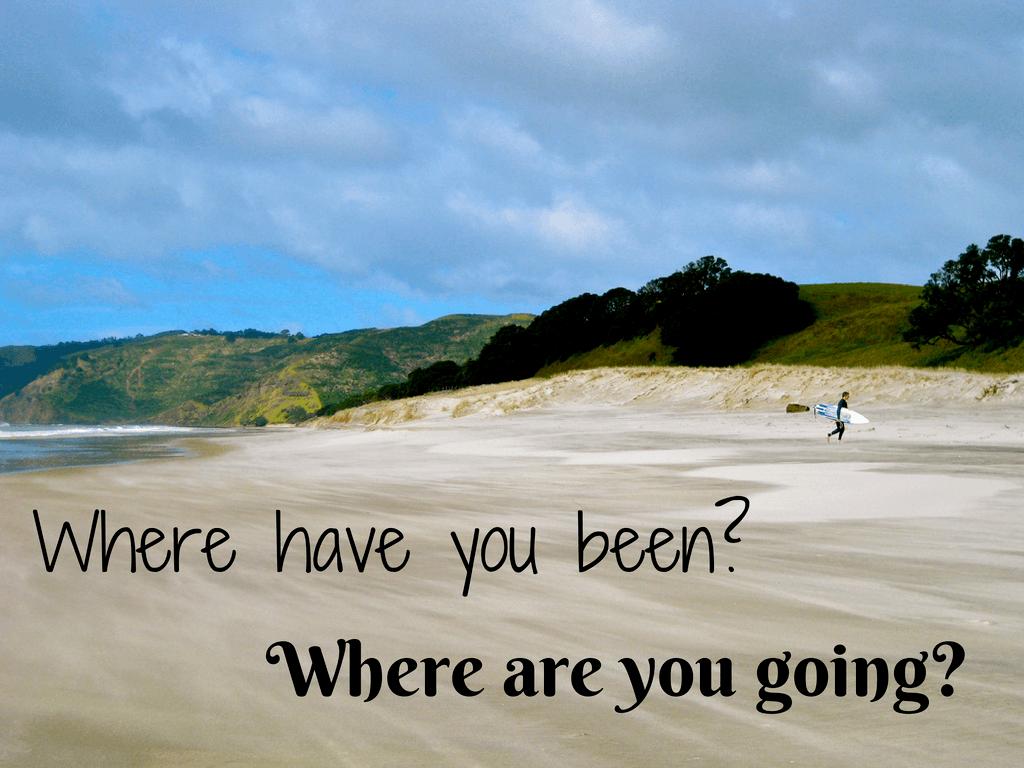 Traveler questions