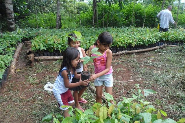 Sustainable-Harvest-children