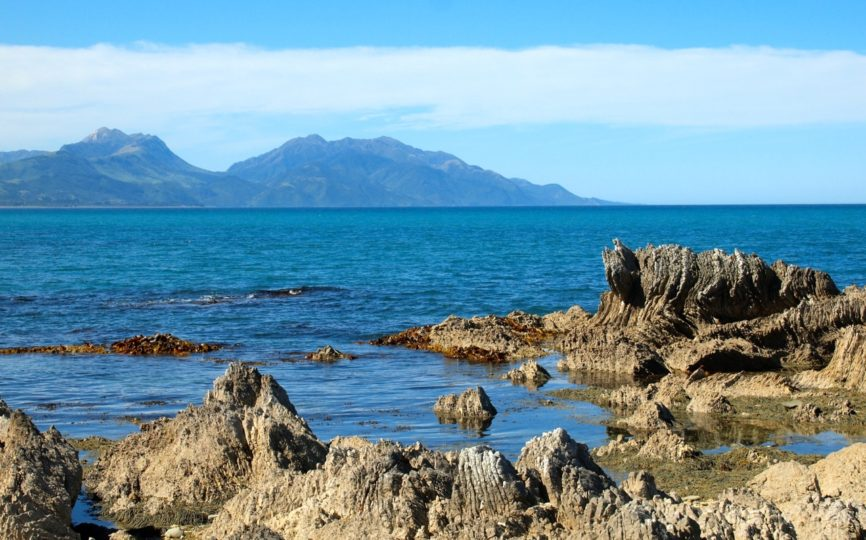 6 Ways to Save Money While Traveling in New Zealand