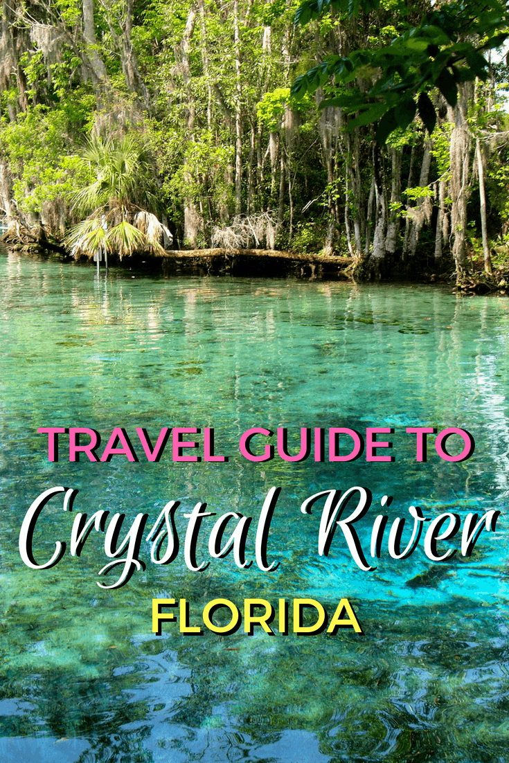 Great Things To Do In Crystal River Florida