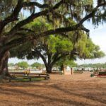 3 Things You Probably Didn't Know About Ocala, Florida
