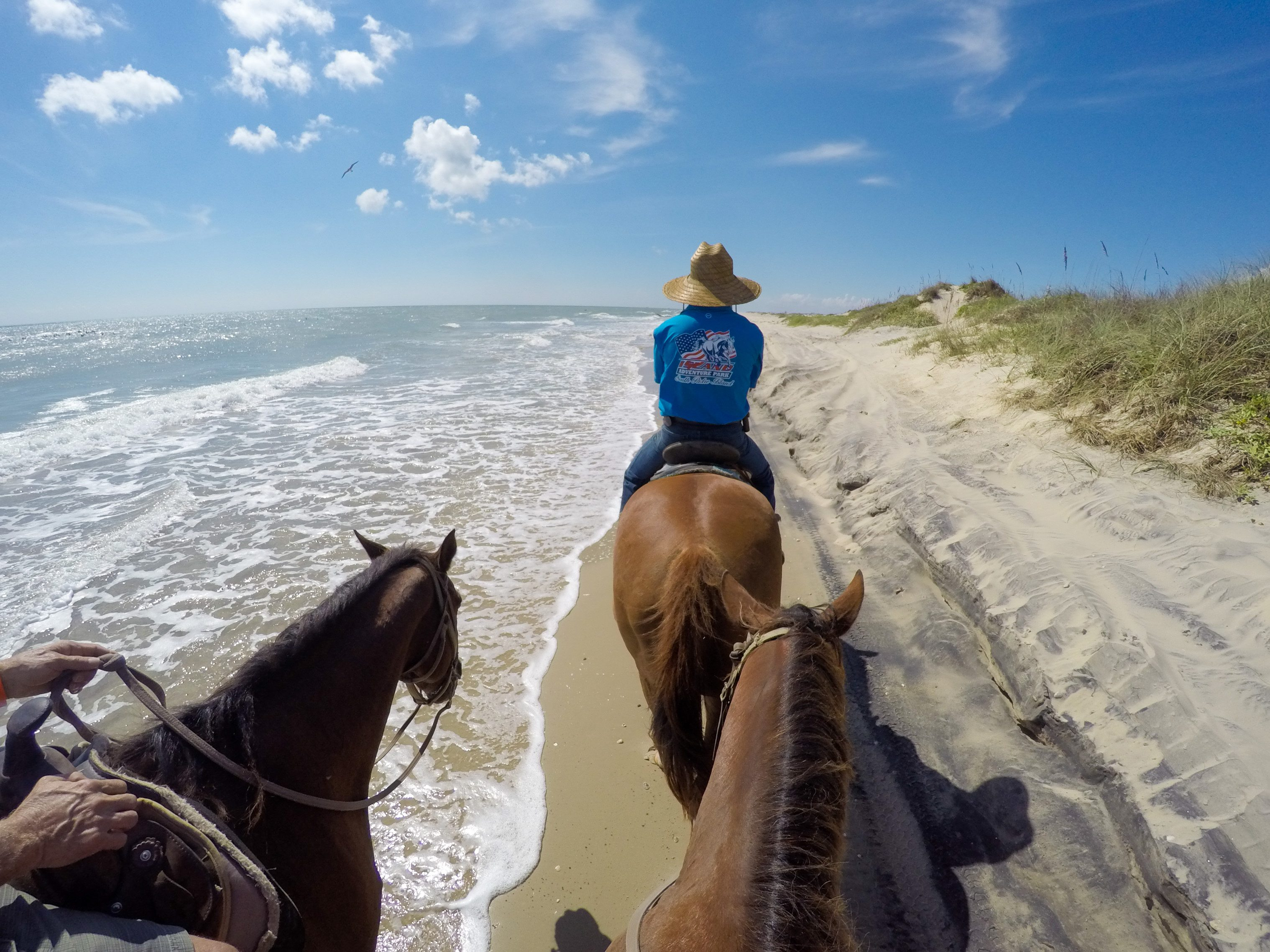 10 Things To Do On South Padre Island That Don T Involve