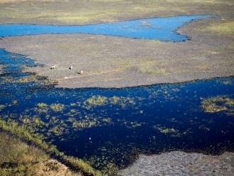 Visiting the Okavango Delta in Botswana