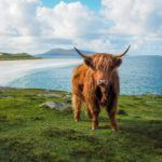 The Isle of Lewis and Harris: Scotland's Best-Kept Secret?