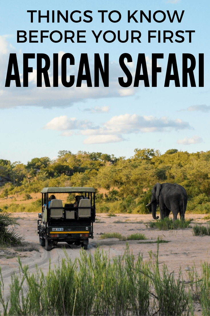 Things to know before your first African safari
