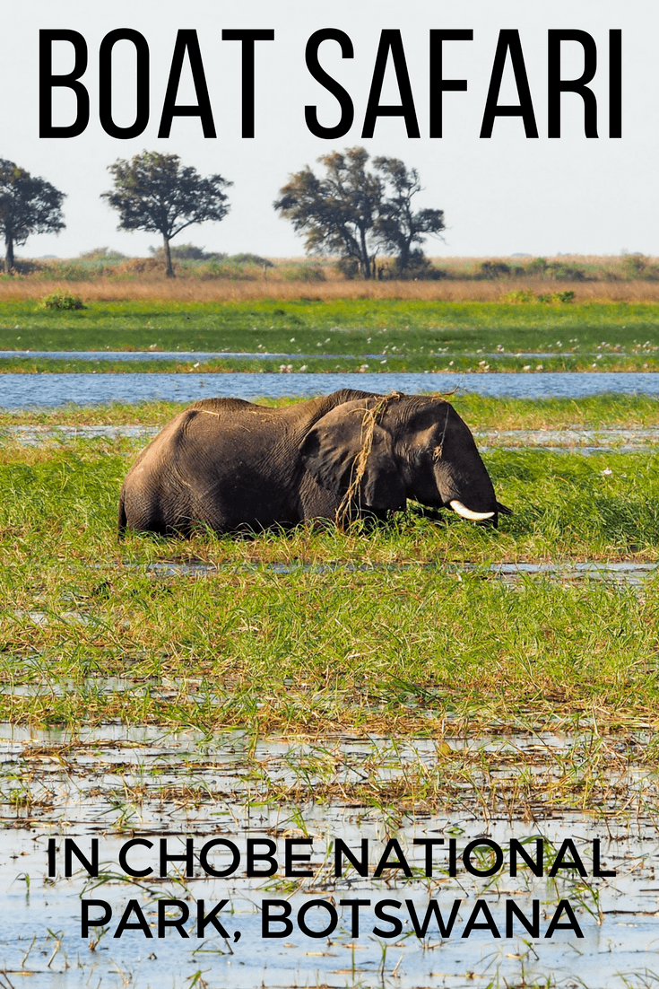 Going on safari in Chobe National Park in Botswana