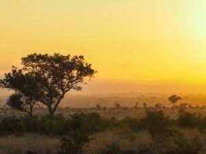 South Africa sunrise