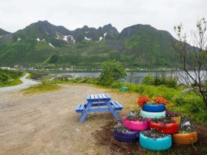 Northern Norway road trip