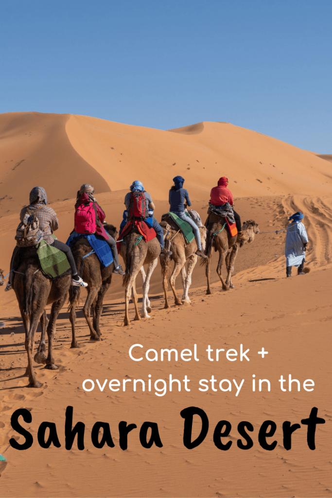 Sahara Desert camel trek and overnight stay