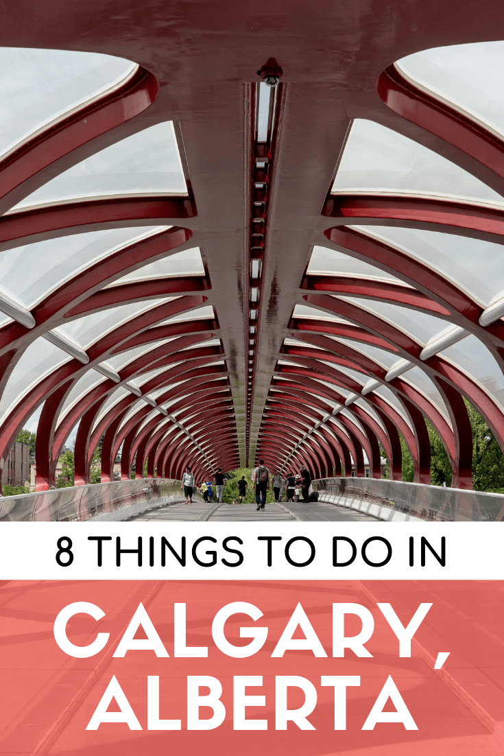 8 things to do in Calgary in summer