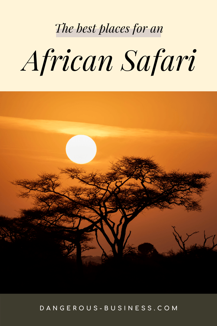 The best places to go on an African safari