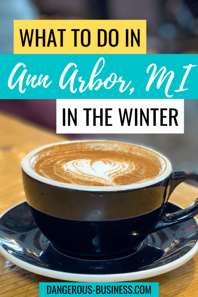 What to do in Ann Arbor, Michigan in winter