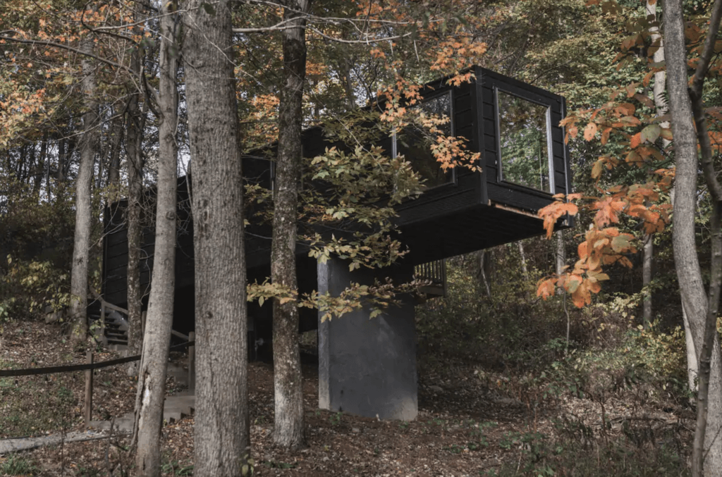 The Box Treehouse